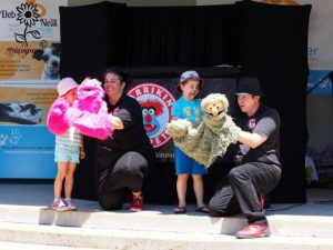 Brisbane Entertainment, Childrens Entertainer, Primary School | Puppet Show, Puppetry Workshops - Book Week